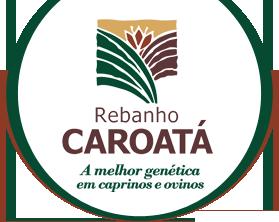 Logo: Rebanho Caroatá